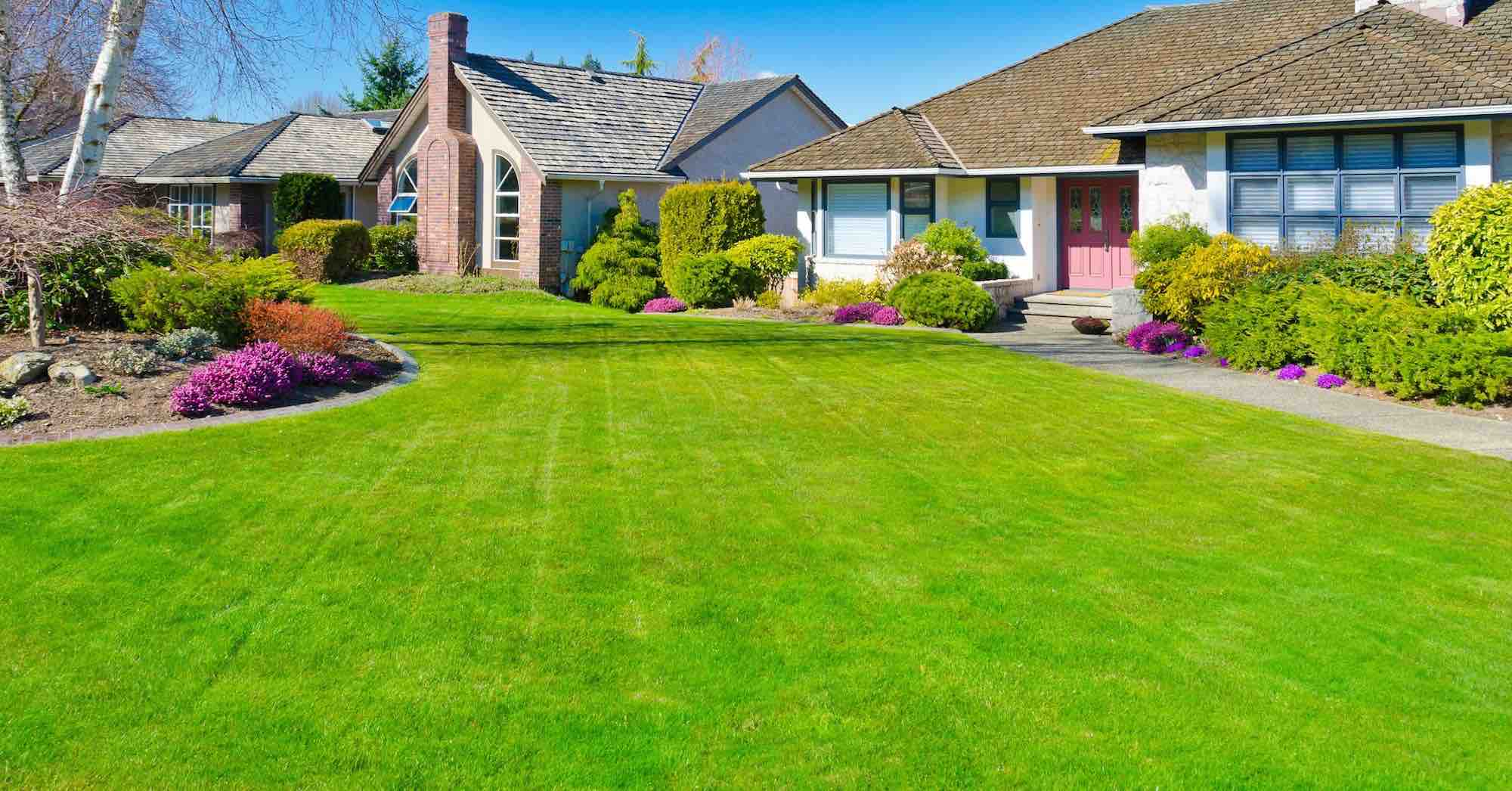 Yard Clean Up | Spring & Fall Cleanups | Surrey, Langley ...